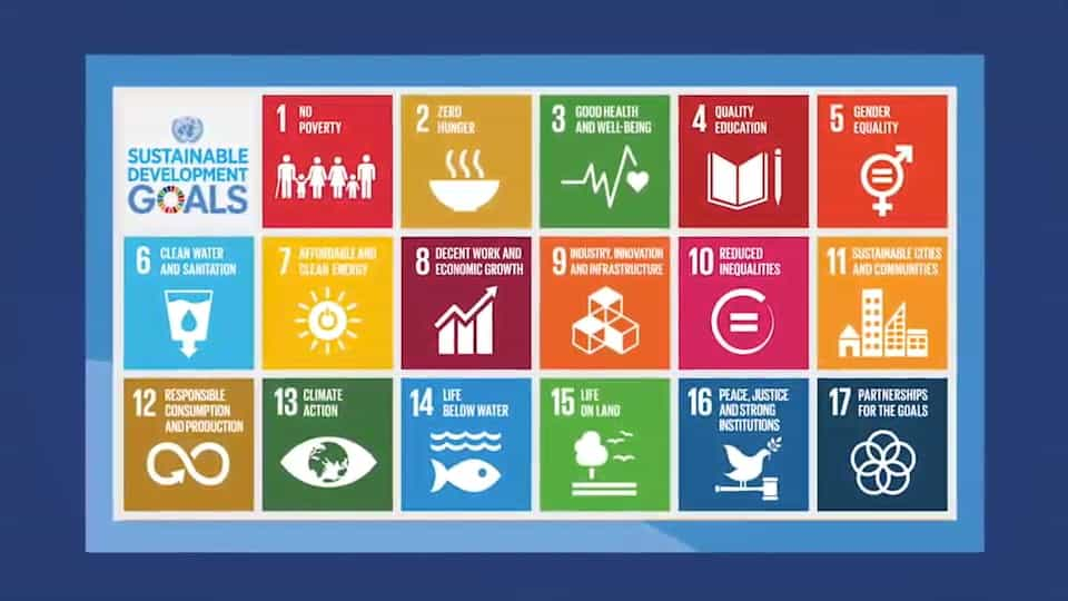 Screenshot of a video by World Federation of the Deaf that explains the Sustainable Development goals (SDGs) in International Sign.