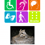 "At the top are six icons associated with different disabilities: A wheelchair symbol, symbol referring to audio loop, a brain inside a head, the symbol for sign interpreting, person with a white cane, and braille. Below these icons is a photo of a sculpture showing hands making the sign for ""connection"" or ""cooperation""."