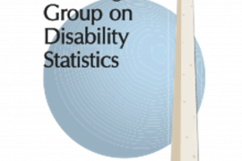 Logo for the Washington Group on Disability Statistics. Behind the name of the group is an image of the globe next to an image of the Washington Monument.